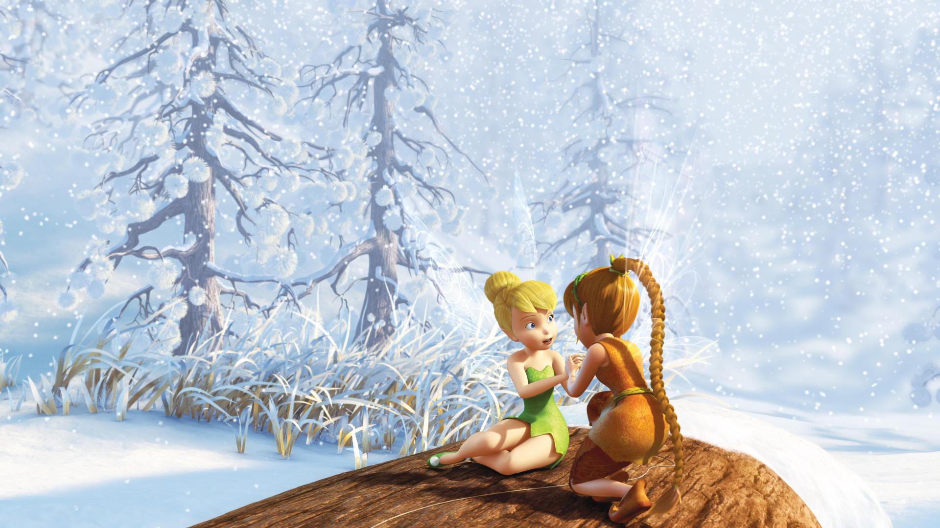 Фей тайна зимнего леса 11 фотография