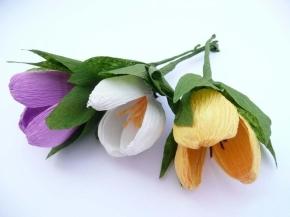 tulipas de papel crepom – passo apasso